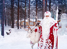 Дед Мороз со своими оленями