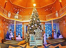 Новогодняя елка Деда Мороза