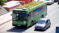 В Мадриде на автобусах появятся сады