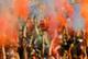Фестиваль красок состоится в Индии 27 марта