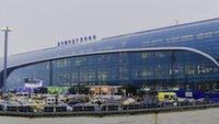 Домодедово запустил новый сервис для пассажиров при розыске багажа