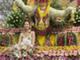 В тайском городе Чиангмай состоялся традиционный Фестиваль цветов