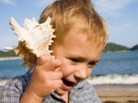 Организация отдыха детей в России будет лицензирована