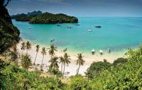 В Таиланде объявили о начале зимы