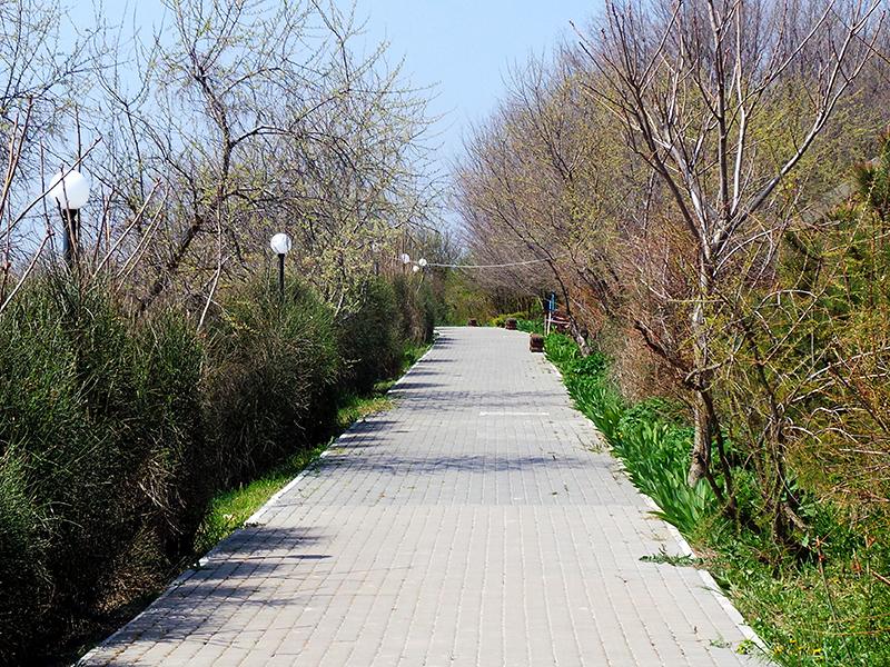 Дорога к пляжу. Пансионат Солнечная Долина в Крыму
