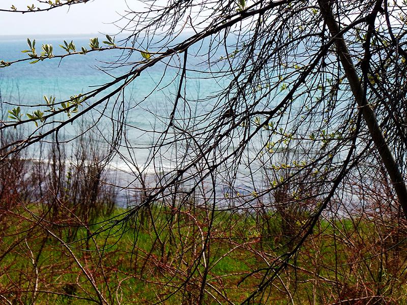 Залив мыса Тарханкут