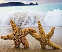 Золотые пески